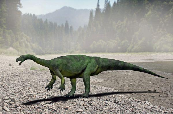 Изображения динозавров. Часть 1