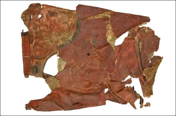 Обнаружили упряжь древнеегипетских колесниц