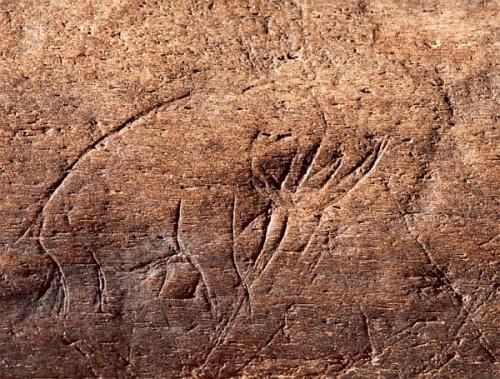 Найден древнейший американский рисунок, удивительно сложный для своего времени