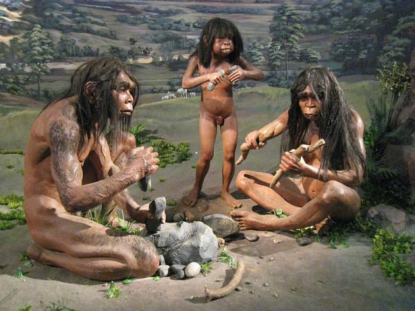 Homo erectus-3